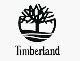 To show the image of Timberland logo